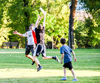 Best 2015 Ultimate Frisbee